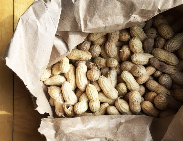 Ballpark-style roasted peanuts in a brown paper bag.