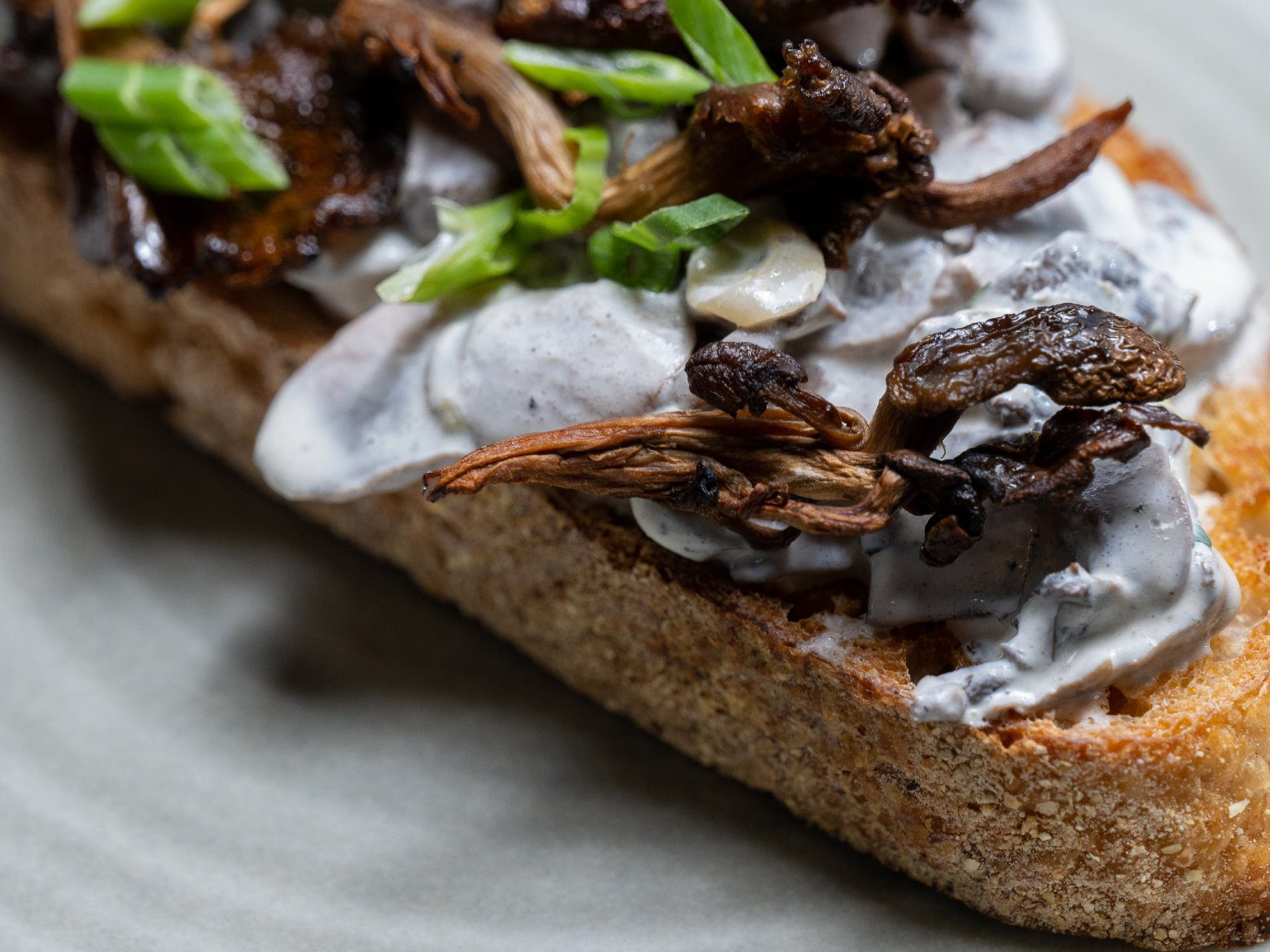 Mushroom stroganoff toast on a grey plate