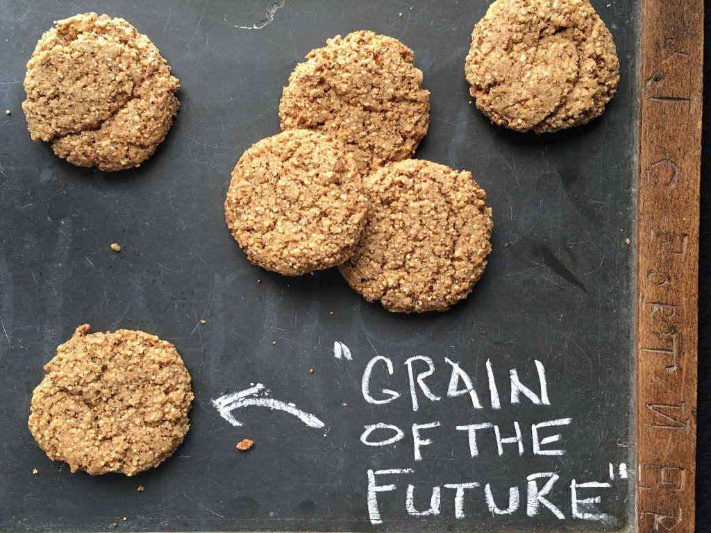 Amaranth wafer cookies on a blackboard.