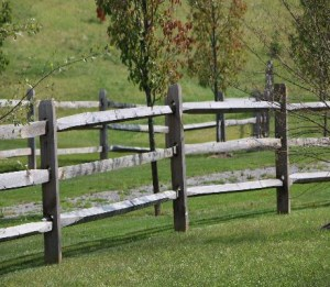 wood fence in field
